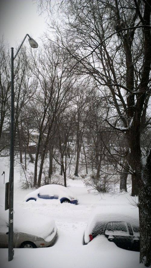 snow day car fuck